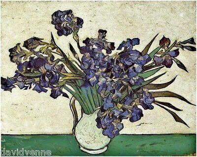 Van Gogh Irises Mono Deluxe Needlepoint Canvas Print -