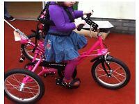 Tomcat Special Needs Trike Pink