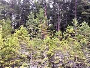 Land for sale Creston BC