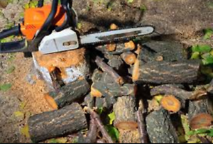 Ridgepro tree lopping services/ woodchipper hire Wahroonga Ku-ring-gai Area Preview
