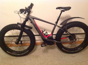 electric pedal assist fat bike for sale