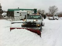 The Tree Guy & Snow Plowing