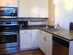 Fully Furnished Executive Suite September 1
