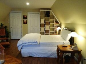 Extra large bed sitting room