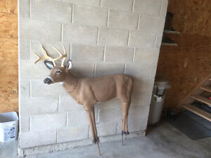 Buck/Doe decoy