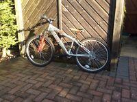"""Girls and Boys 24"""" Mountain Bikes"""