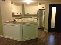 Newly renovated –large basement apartment –utilities included