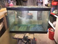 Large open topped aquarium vivarium fish tank set up