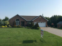NEW PRICE and PICs Beautiful all brick home on 1 acre property