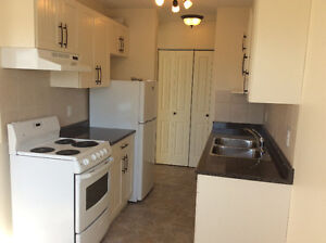DECEMBER FREE 1 BD NEWLY RENOVATED BALCONY INCENTIVES ELEVATOR