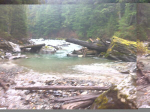 Placer Claim on Lardeau Creek in Trout Lake Revelstoke British Columbia image 3