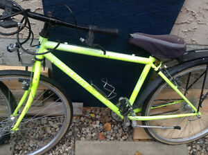 fixie bike in need of new owner and some love