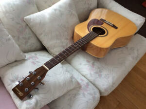 Guitare Acoustic Norman B20