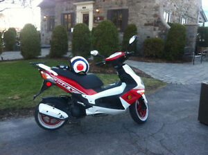 must see! faut voir! 2010 scooter