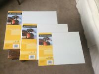 "Artists Canvas Boards 20 x 16"" 20 x 18"" and 12 x 16"" 2 of each - NEW!"
