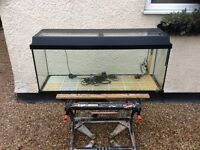 Juwel complete tropical aquarium fish tank set up