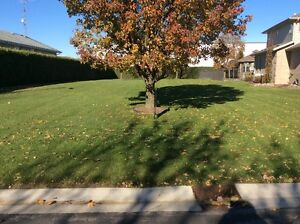 Serviced Lot for Sale in desirable Leamington subdivision Windsor Region Ontario image 1
