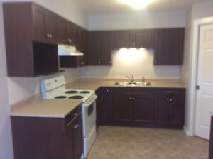 1 Bedroom condo in Salmon Arm available immediately!