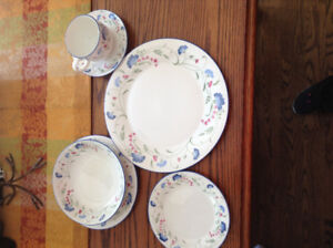 Royal Doulton Expressions Windermere Dishes!