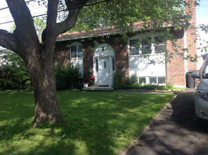 maison   à louer   bungalow