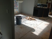 WE ARE THE BEST IN FLOOR REMOVAL! CALL TODAY! 289.456.4083