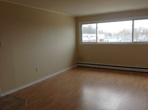 Large Bachelor Apartment, Heated
