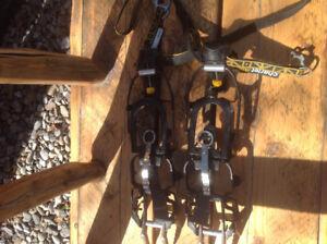 Mountaineering M10 Crampons.  ghbuckle@telus.net
