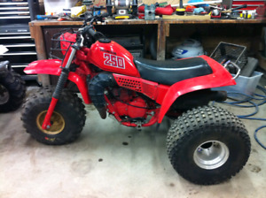 Wanted: 1981 Honda ATC 250r parts