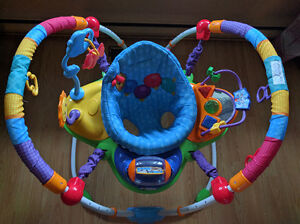 Baby Einstein Musical Activity Jumper (Excellent Condition)