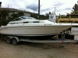 1993 25' SeaRay Express Cruiser and new aluminum I-Beam trailer