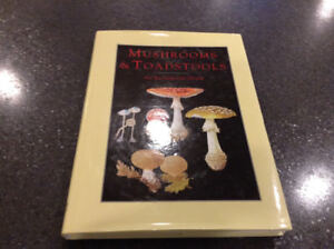 Mushrooms and Toadstools an Illustrated Guide