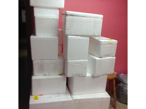 Commercial Styrofoam coolers