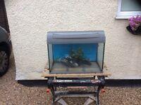 Tetra complete tropical aquarium fish tank set up