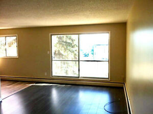 2BEDROOM RENOVATED SPACIOUS APARTMENTS FOR RENT DOWNTOWN LACOMBE