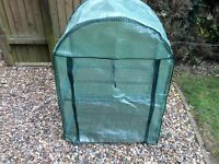Plastic Greenhouse - small