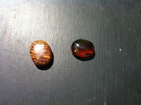 SET OF TWO GEMSTONES INDIAN SCRIPT STONE & TRANSPARENT TIGER EYE