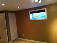 Newly renovated one bedroom basement suite available Nov 1st