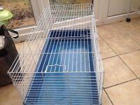 Indoor guinea pig cage.