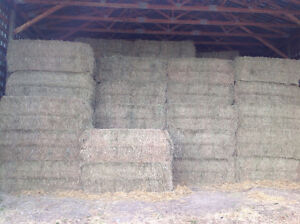 Hay for sale baled with no rain.