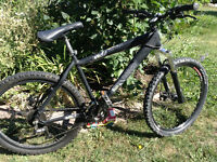 """24 Speed Norco Rival 19"""" frame"""