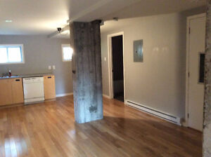 Renovated  Lighful Bachelor Villeray