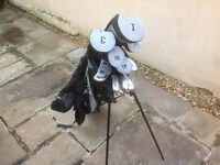 Full set of Stainless Steel Prosimmon Golf Clubs and Stand Bag