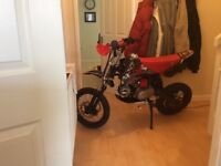 Wpb 110 stomp pitbike