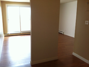 Large 2 Bed, 1 Bath Condo Available May 1st!