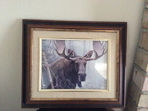 2 animal pictures, beautiful wood frames