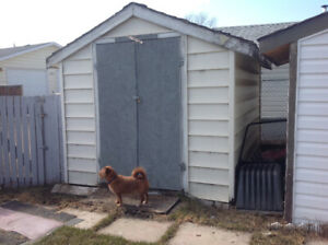 8x 10 shed.  300.00.   Must be moved    Call 403-872-2403