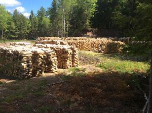 Stove Wood