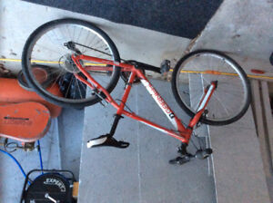 Great kids road bicycle
