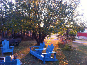 Arnadeck Chairs and bench
