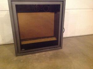 Napoleon EF30 electric fireplace